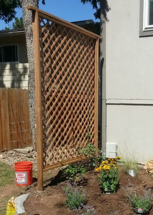 Basic Climbing Lattice and Privacy Wall