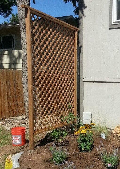 Basic Climbing Lattice and Privacy Wall