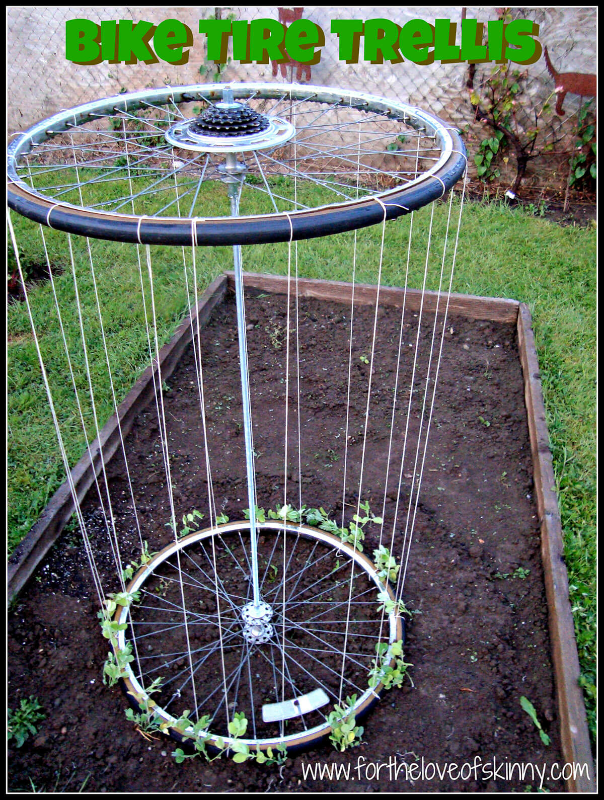 Recycled Bike Tire Garden Trellis