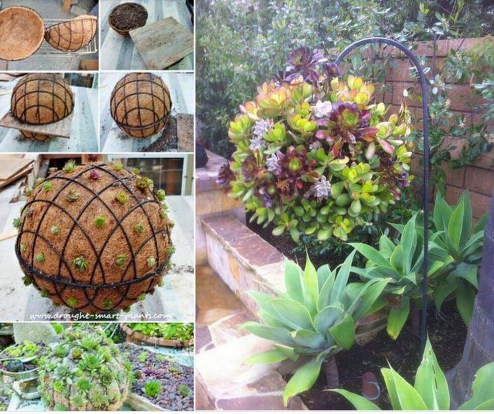 Incroyable DIY Succulent Orb Hanging Planter