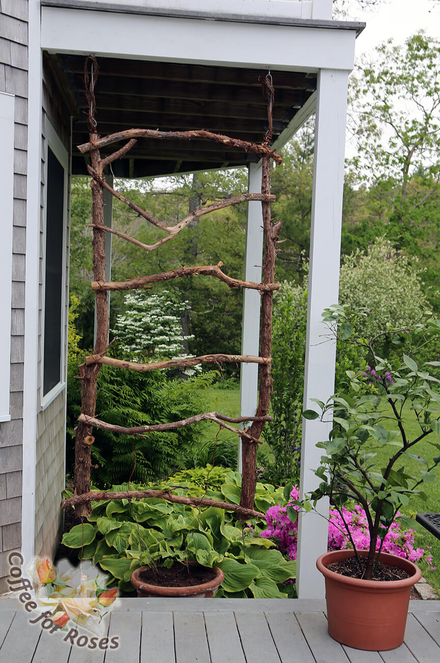 24 Best Diy Garden Trellis Projects Ideas And Designs