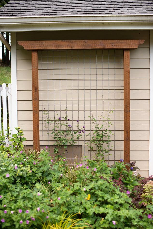 Simple and Stylish Garden Lattice