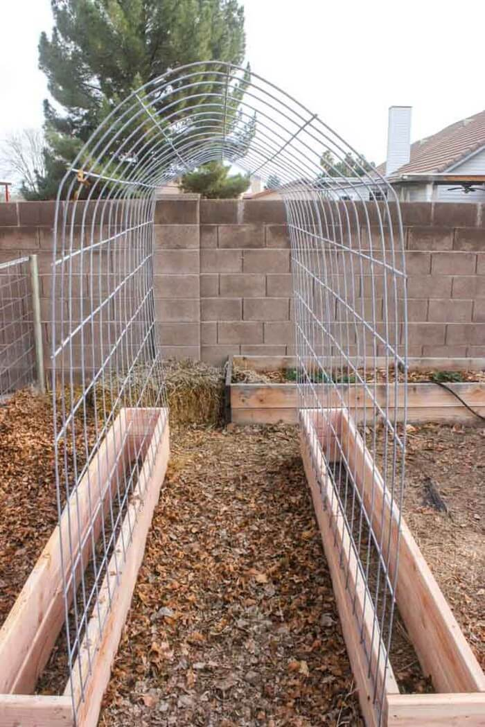 24 best diy garden trellis projects ideas and designs for Simple diy garden designs