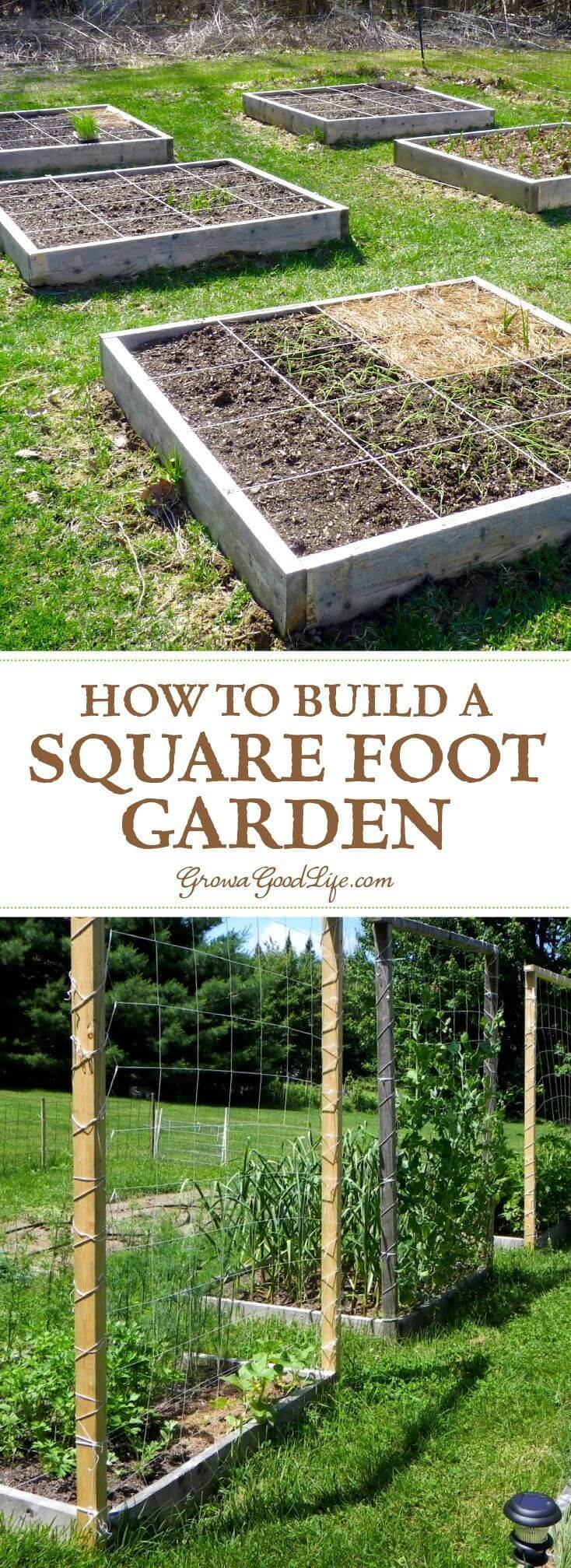 Climbing Lattice for Raised Garden Beds