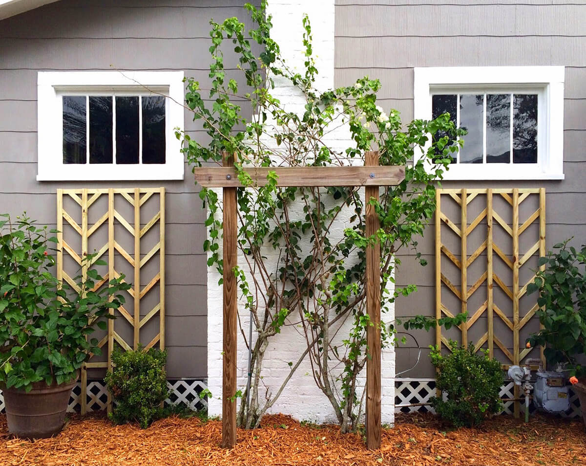 24 best diy garden trellis projects ideas and designs for Garden trellis ideas