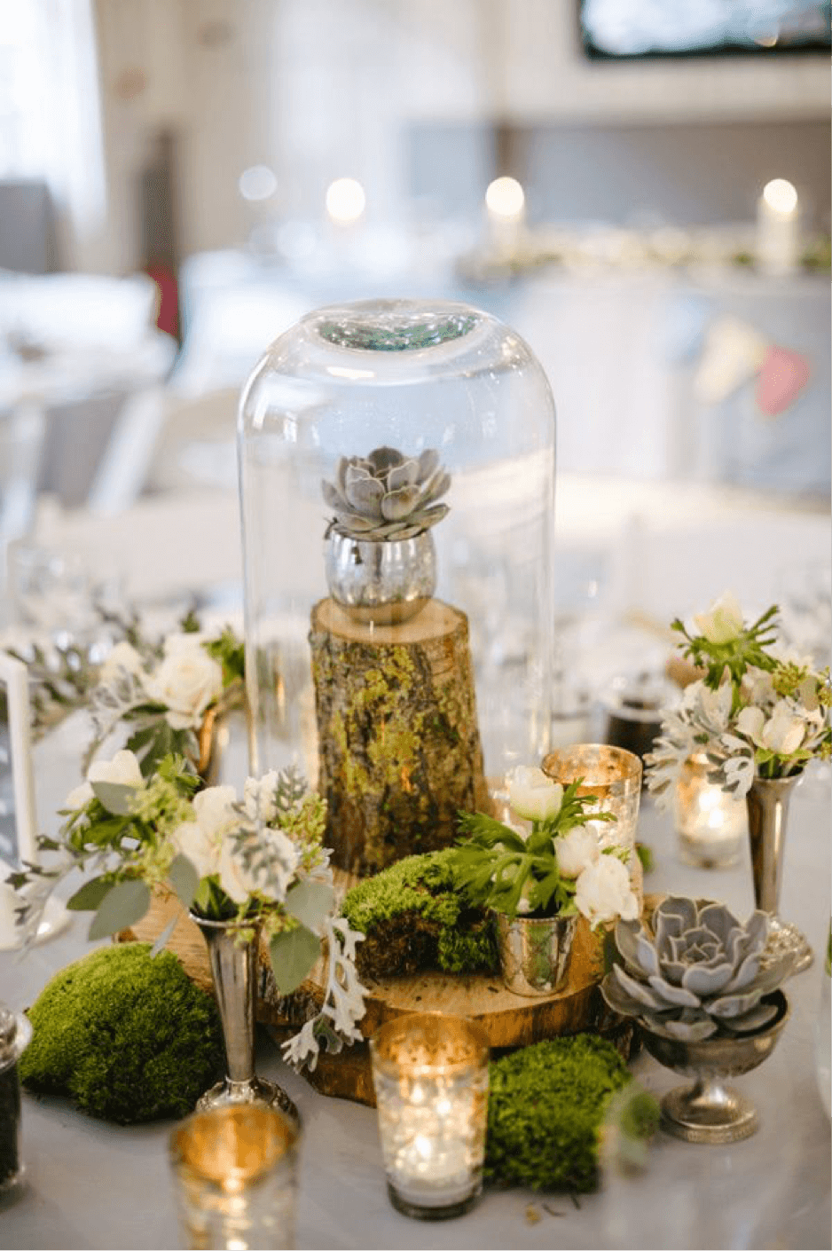 Woodland Inspired Miniature Vases and Domed Succulents Table Decor
