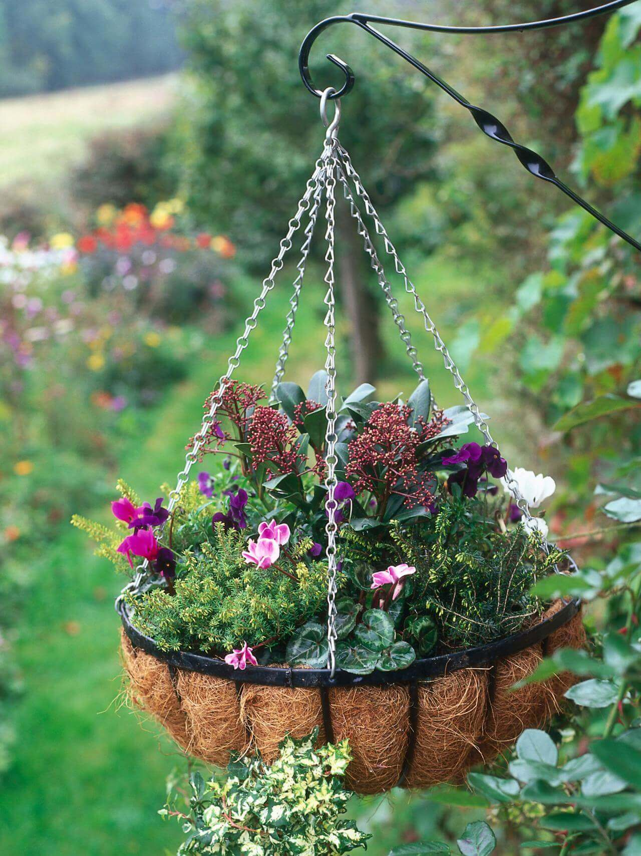 Elegant Seasonal Outdoor Hanging Basket