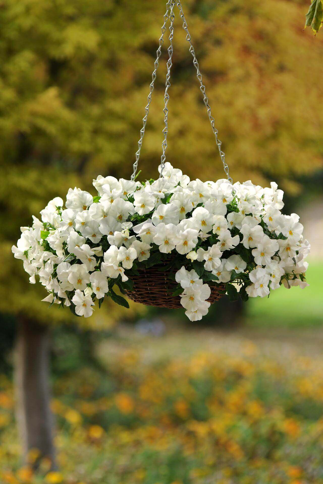 45 Best Outdoor Hanging Planter Ideas And Designs For 2019