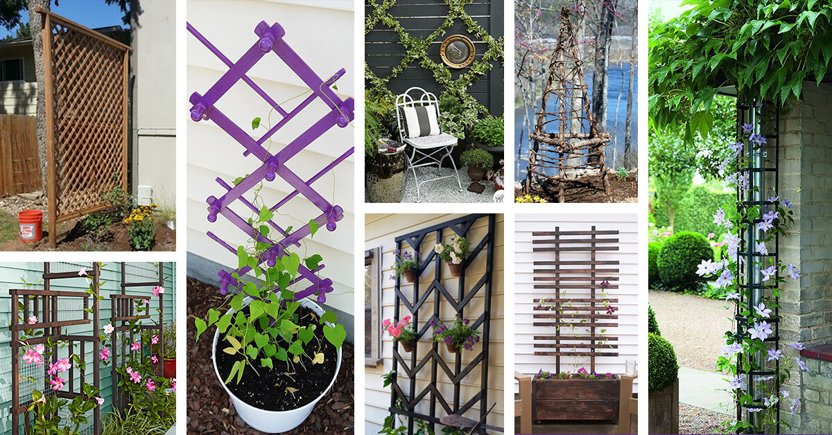 24 Best Diy Garden Trellis Projects Ideas And Designs For 2020