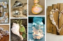 DIY Shell Projects