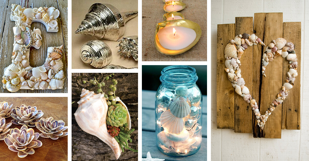 35 Best Diy Shell Projects Ideas And Designs For 2021