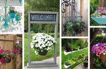 Outdoor Hanging Planter Ideas