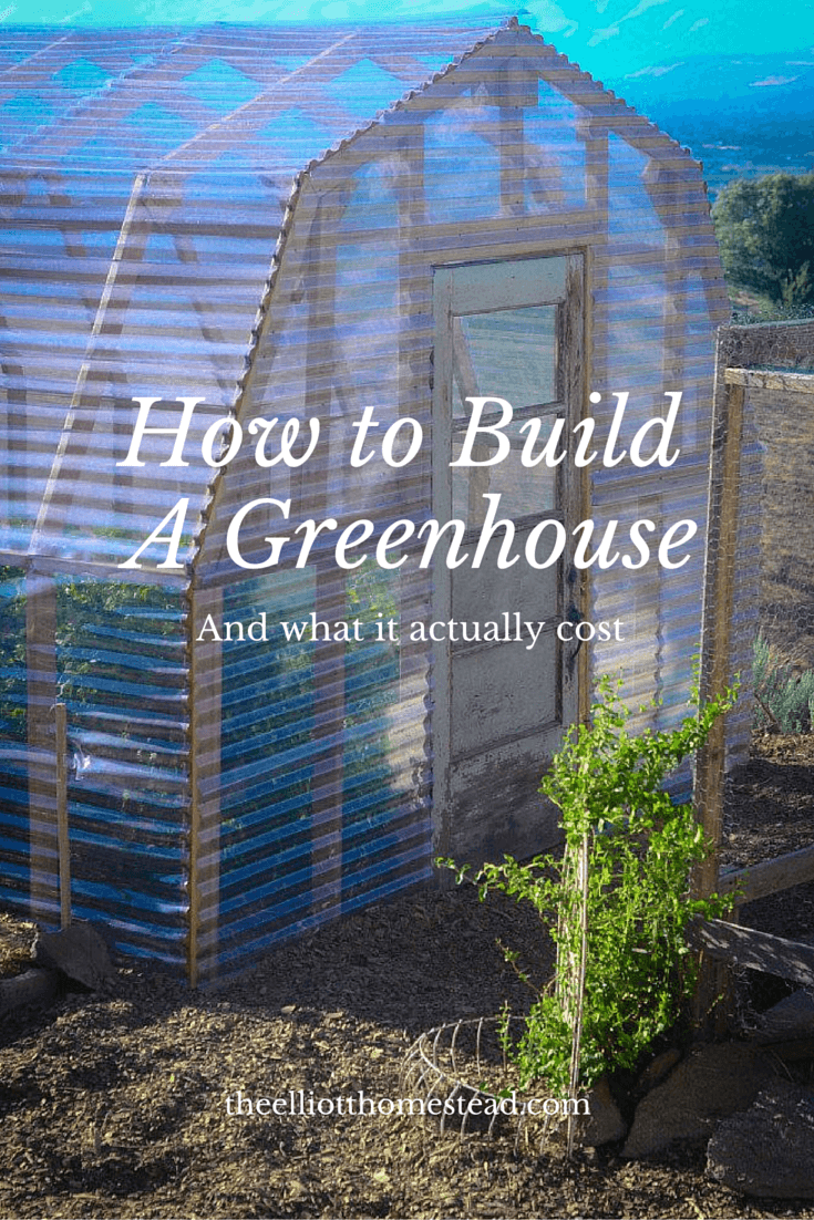 Large Shed-Shaped DIY Green House Ideas