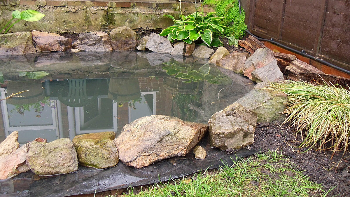 Hand Dug Garden Fish Pond