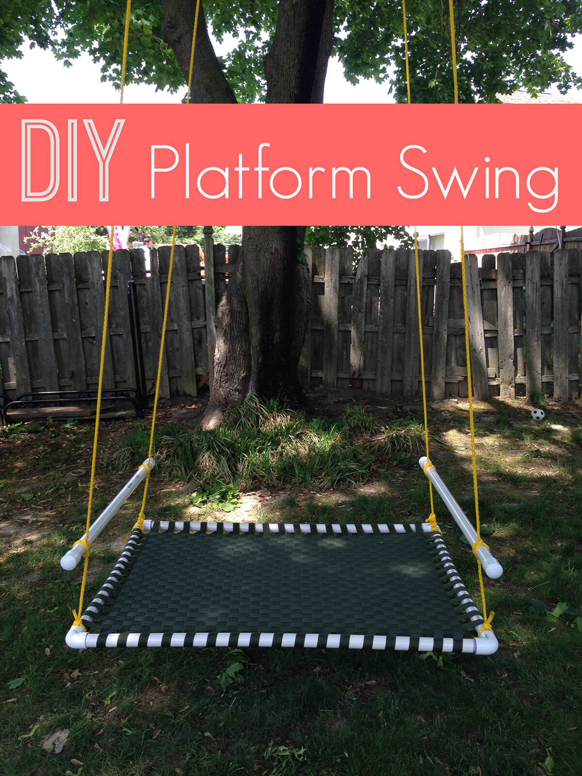 Fun Platform Swing Hanging from a Tree