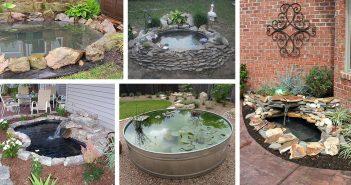DIY Backyard Pond Projects