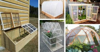 DIY Green House Ideas