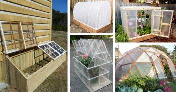 DIY Green House Ideas