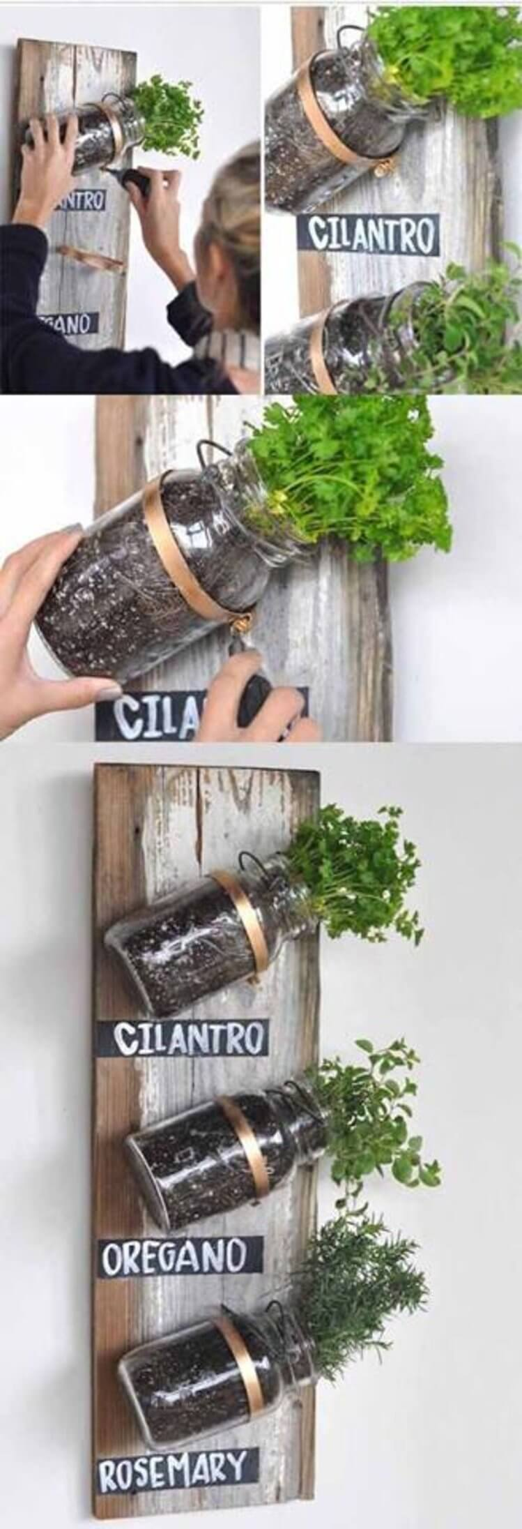 Mounted Mason Jars on Wood Panel Herb Garden