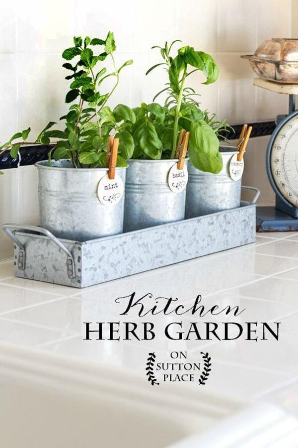 Pretty Little Pails Herb Garden