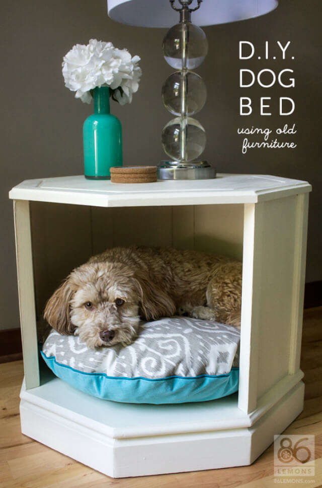 Dog Days Fusion Bed + Table