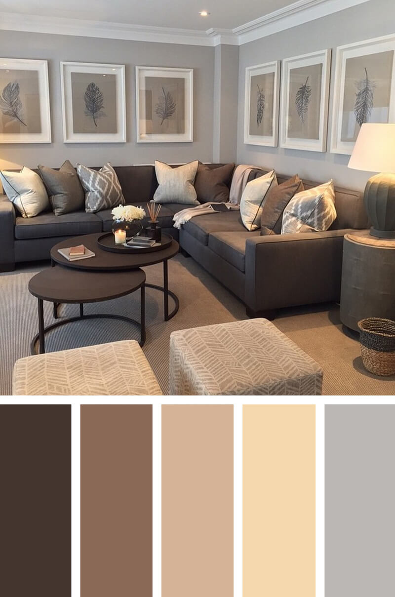 Neutral Wall Color Ideas For Living Room With Brown Furniture