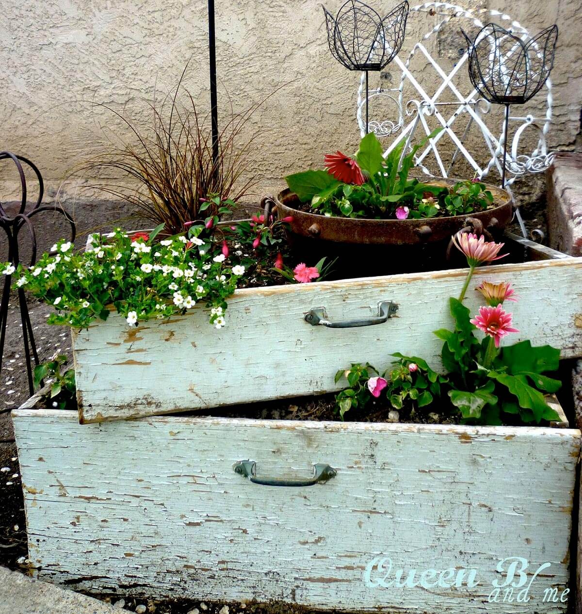 Mini Garden in a Recycled Drawer