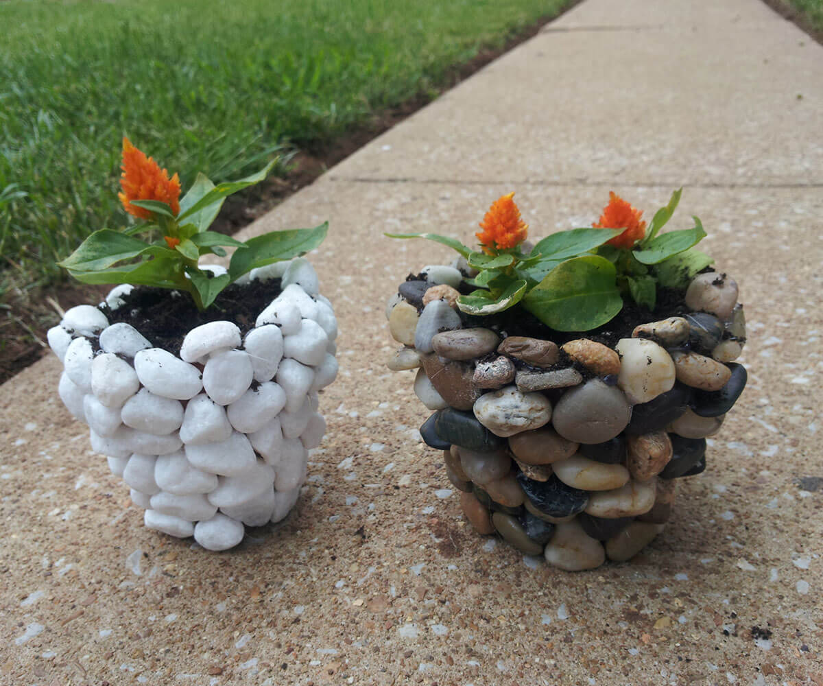 These Lovely Eye-catching Planters are Natural Beauties