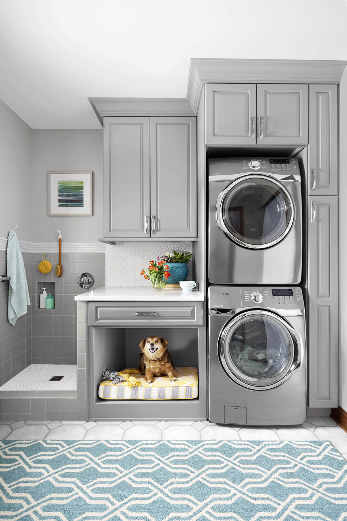 Clothes And Pet Cleaning Laundry Room