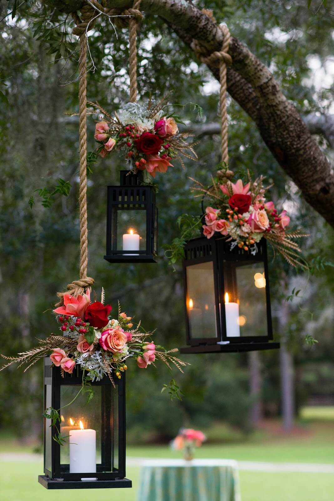 Lit Roses on the Ropes Lantern