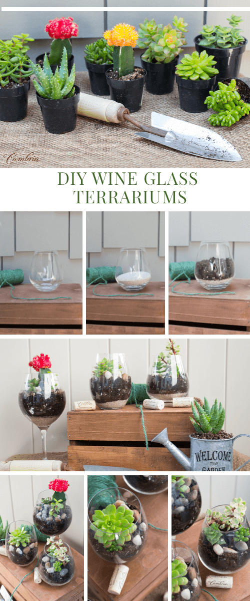 Wine Glass Mini Terrariums