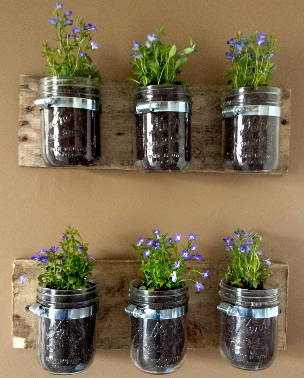 Mason Jar Six-Planter Earthy Wall Set