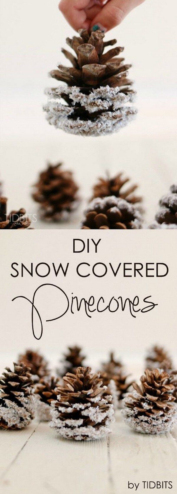Pinecones Dipped In White Glitter