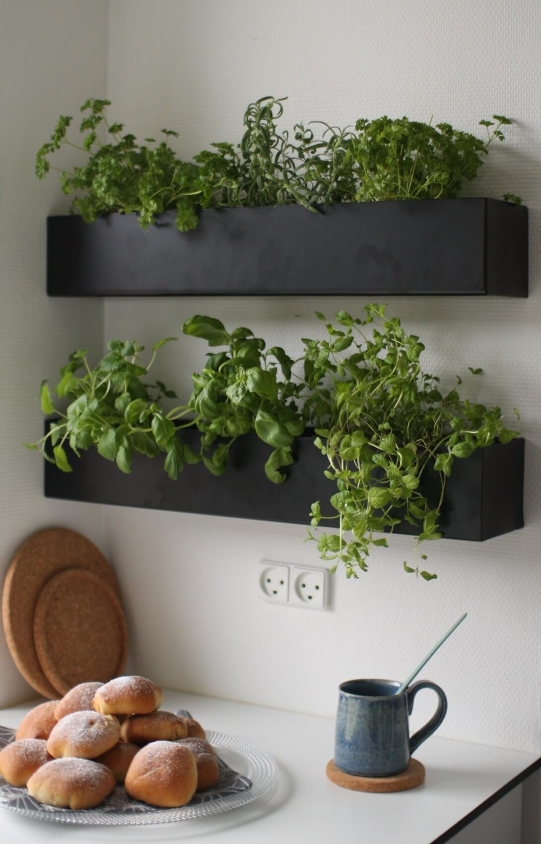 Indoor Planter Box Herb Garden