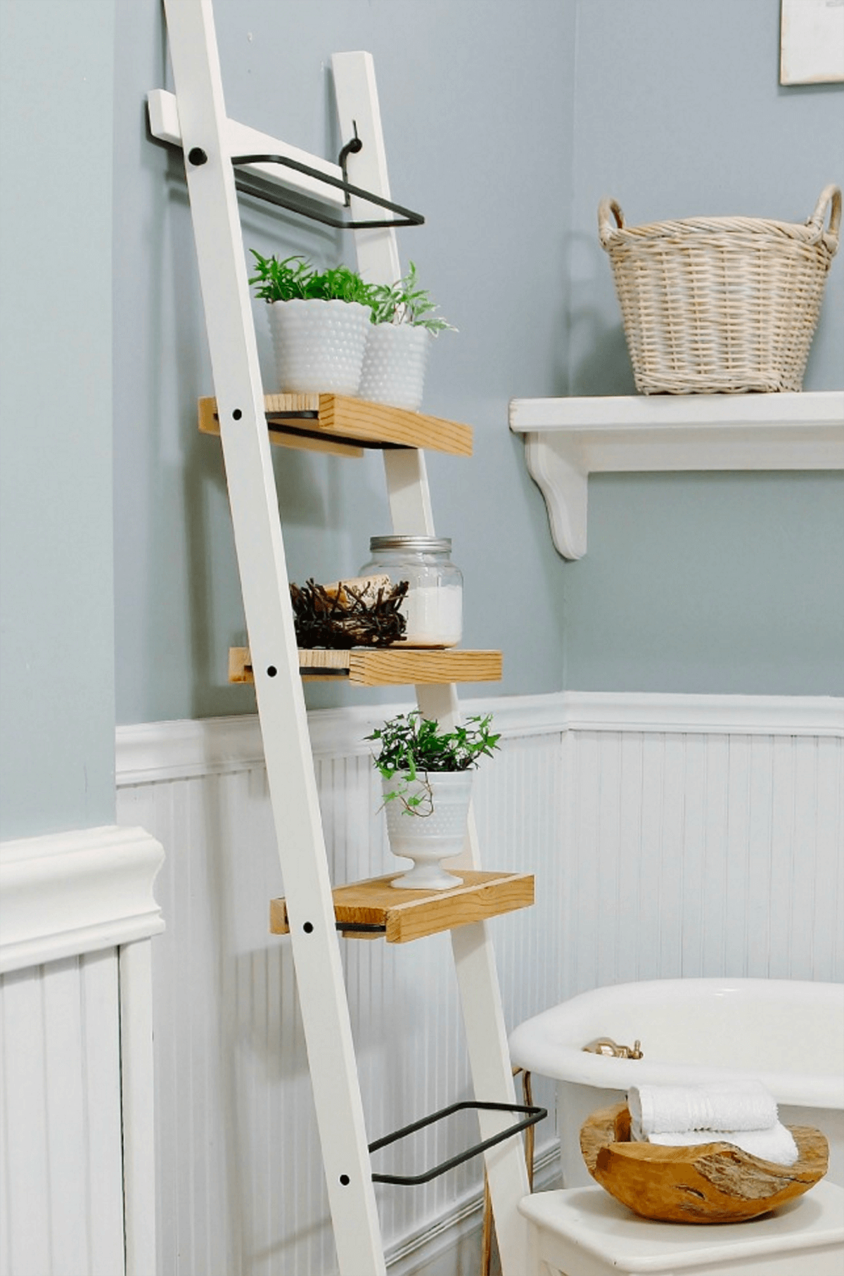Ladder-Shelf Stand for Small Plants