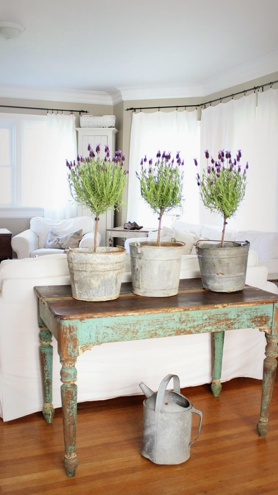 Milk Paint Sofa Table with Potted Lavender