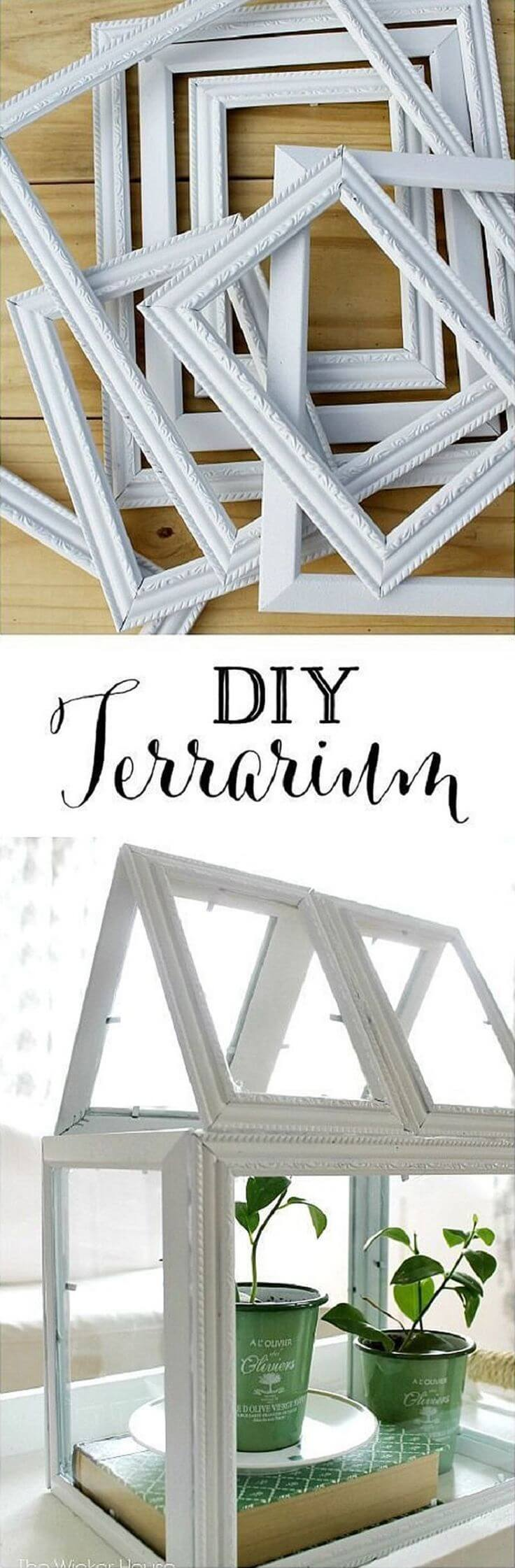 Build a Terrarium with Frames and Glue