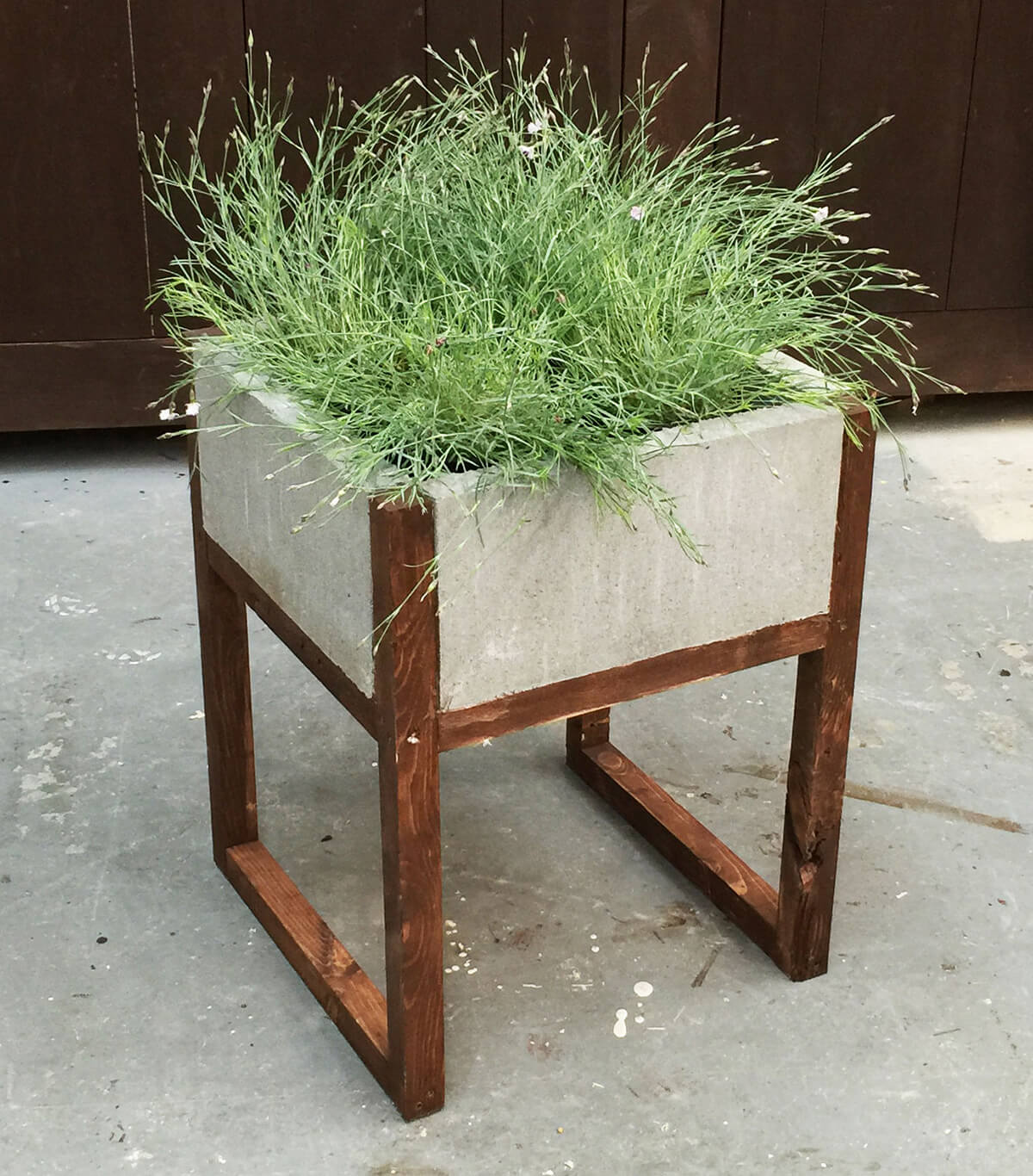Modern Concrete and Wood Planter DIY Project
