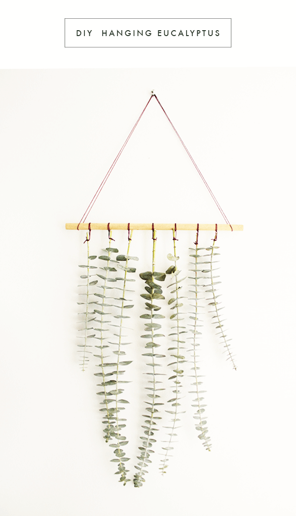 Delicate Wall Hanging with Greenery Leaves