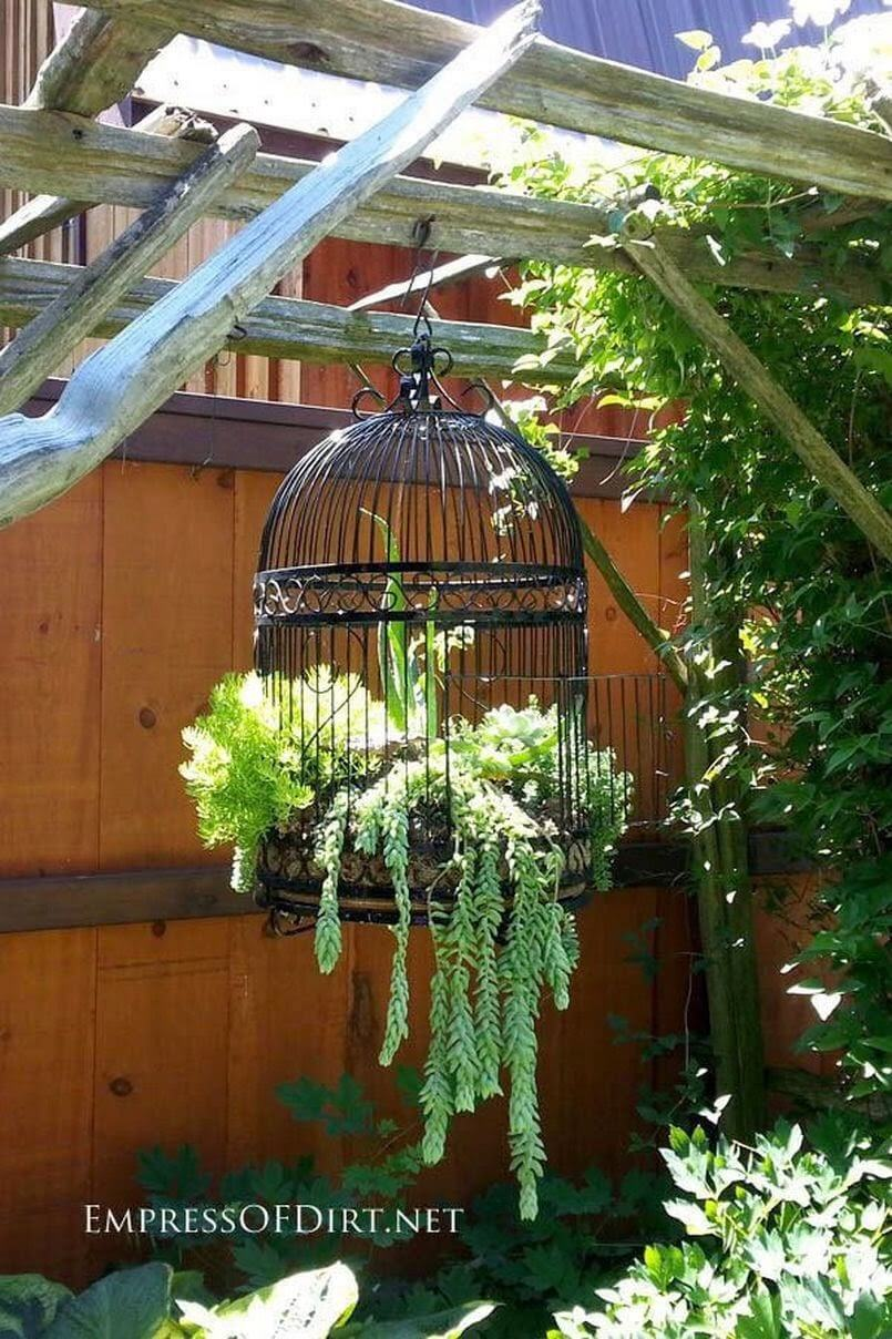 Birdcage with Lush Hanging Greens