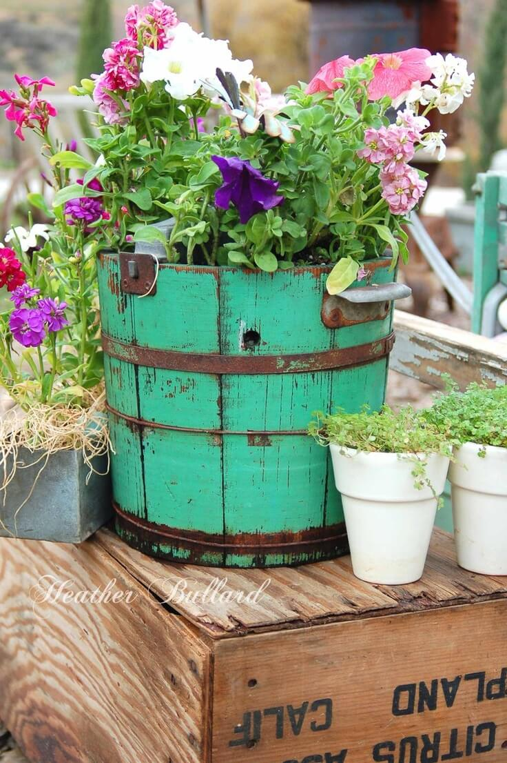 Old Painted Barrels and Crates with Petunias