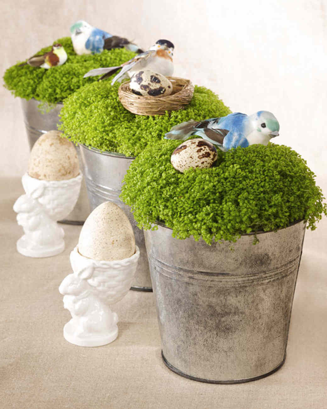 Pails with Adorable Birds and Nests