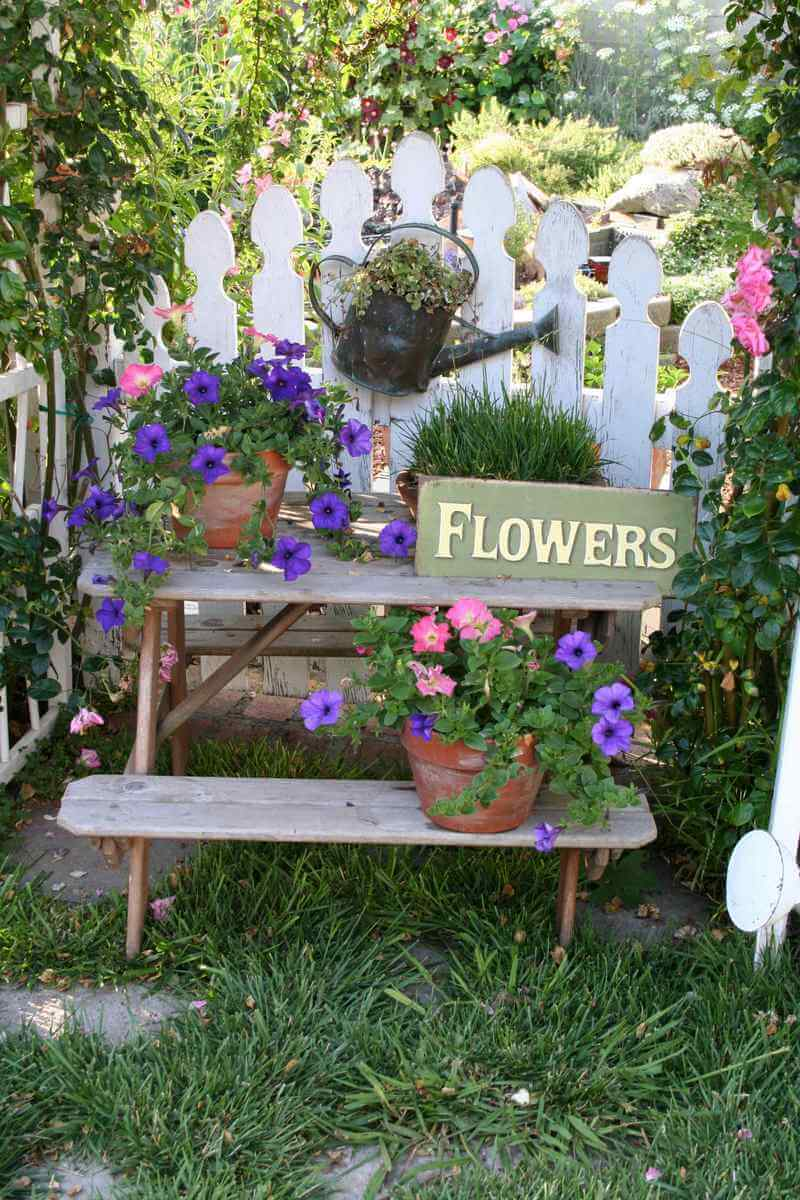 Display with Sign and Potted Flowers