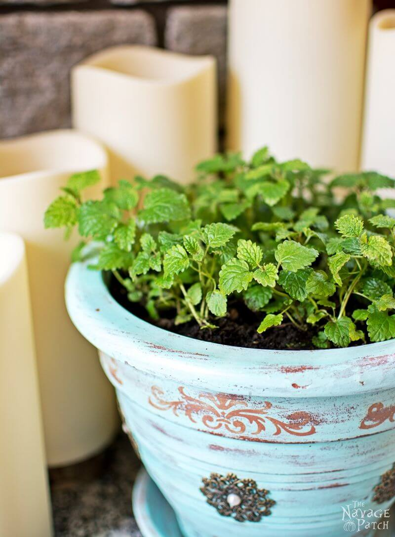 30 frisch wie ein Gänseblümchen DIY Blumentopf Ideen für stilvolle Gärtner