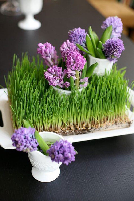 Grass Tray with Mini Hyacinths