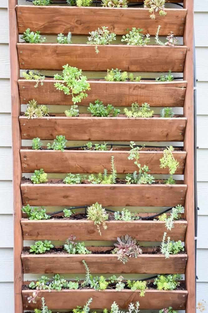 A Decorative DIY Vertical Patio Garden