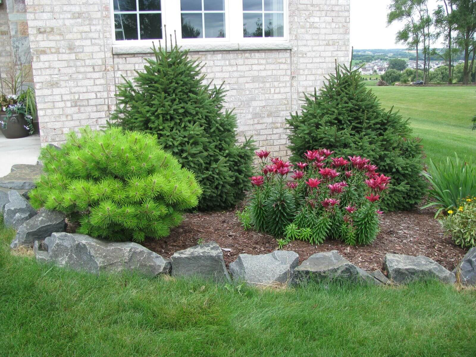 Bushes and flowers with natural rock edges