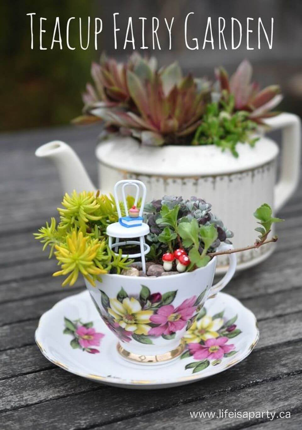 Succulent Fairy Garden Teacup Mini Garden Idea