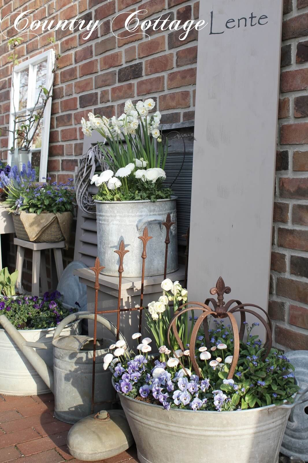 An Assortment of Metal Planters with Flowers