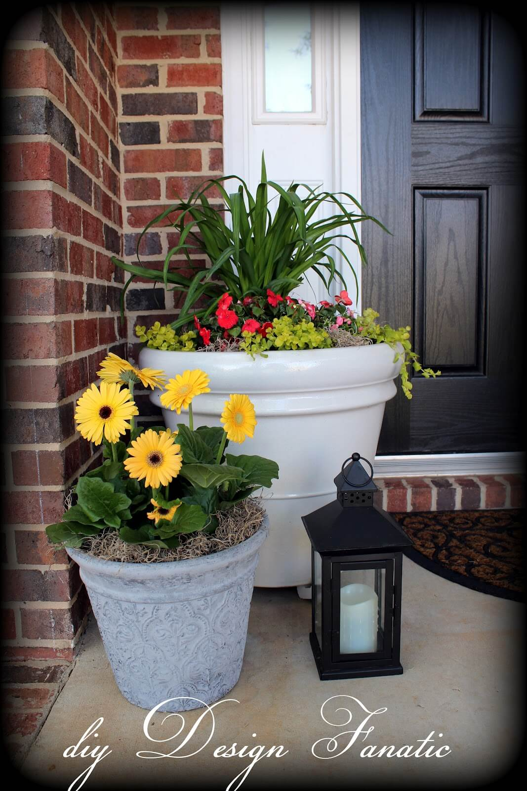 Large Planters with Greens and Gerbera Daisies
